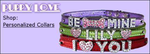 personalized-collars-val15